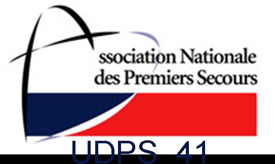 Logo UDPS 41